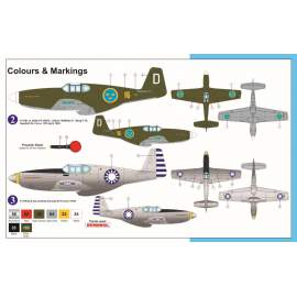 "AZ Model 1:72 P-51B Mustang ""Foreign services"""