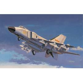 Trumpeter 1:48 Chinese J-8IIF fighter