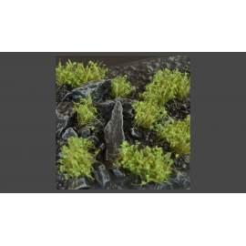 Gamers Grass - Dark Green Shrub