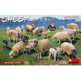 Miniart 1:35 Sheep